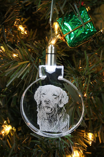 LIGHTED ORNAMENT - Any Dog Breed
