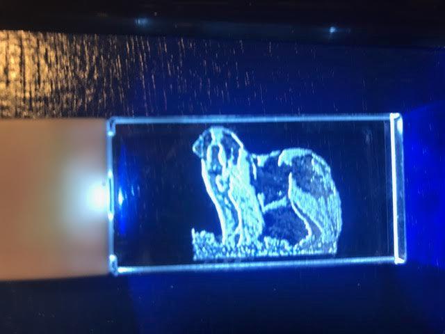Dog Breed lighted keychain night light