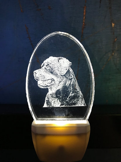 Rottweiler Night Light