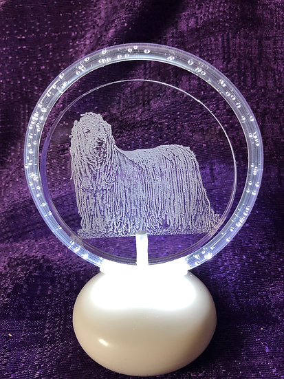 Komondor Dog halo illuminated