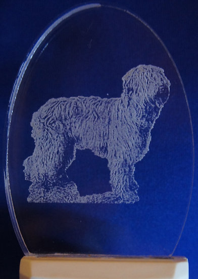 Briard Night Light
