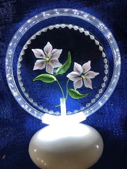 Stargazer lilies HALO