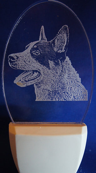 Australian Cattledog  head Night Light
