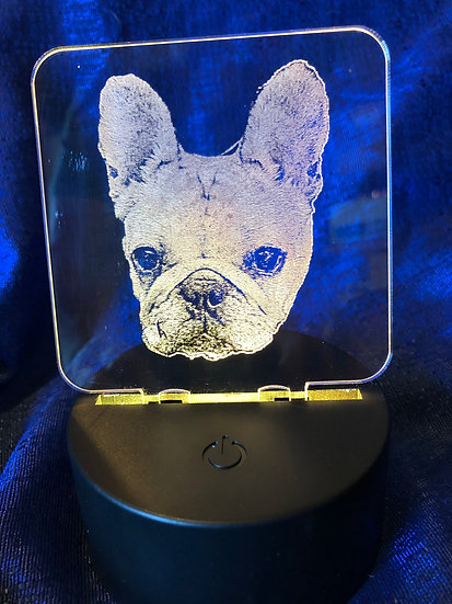 French Bulldog face, body or sitting night light Battery operated color changing