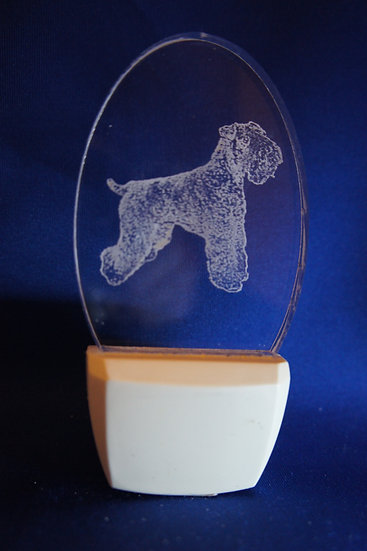 Bouvier Night Light