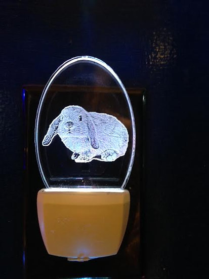 Flop Earred Bunnynight light