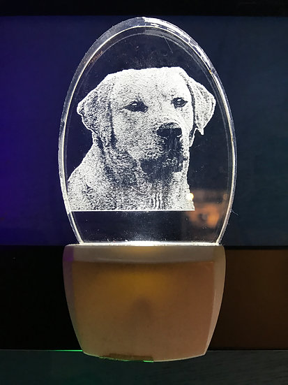 Labrador Retreiver Night Light