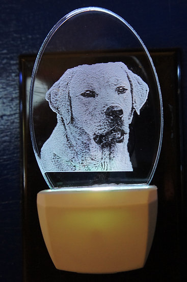 Your PET etched night light