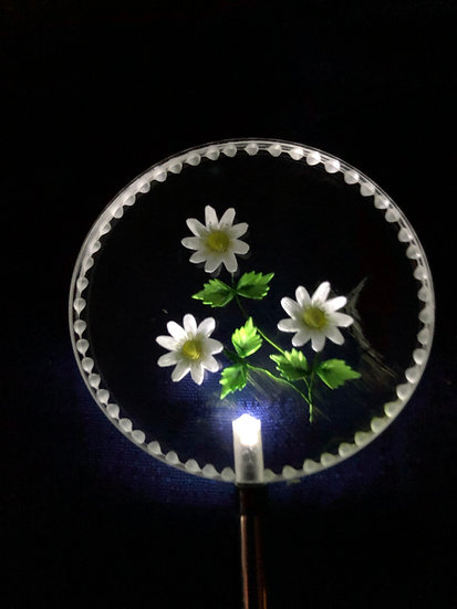 Daisies etched in 3 D Lighted solar stake order any color you like