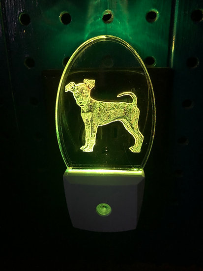 Miniature Pinscher Night Light