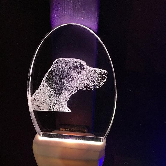 Foxhound head Night Light