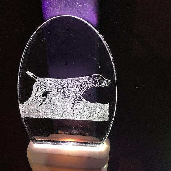 German Shorthaired Pointer Night Light