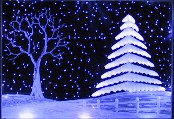 Evergreen trees scene in snow
