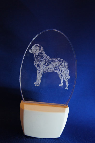 Chesapeake By Retreiver Night Light