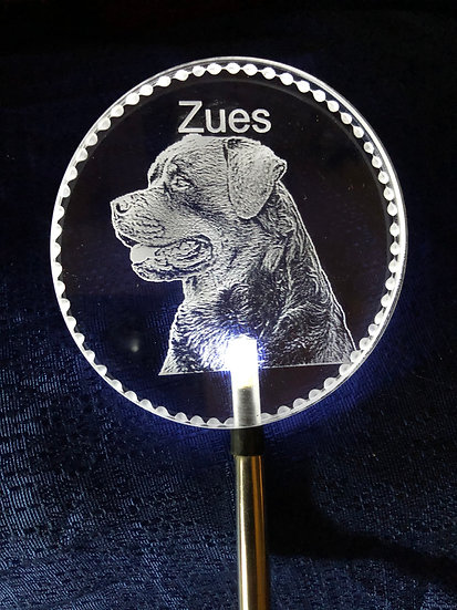 Any dog breed etched Lighted solar stake