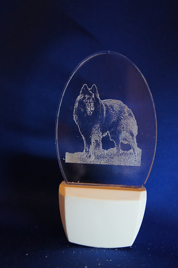 Belgian Terv Night Light