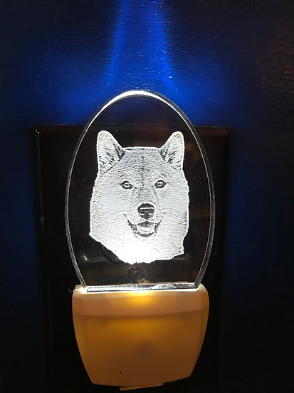 Shibu Inu Night Light