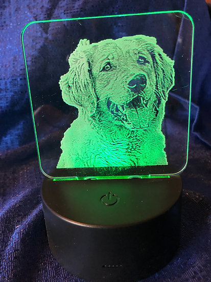 Battery operated color changing Golden Retreiver light