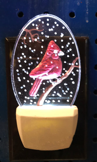 Cardinal  in snow night light