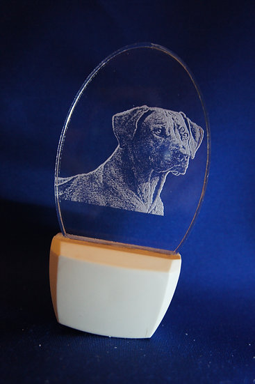 Rhodesian Ridgeback Night Light
