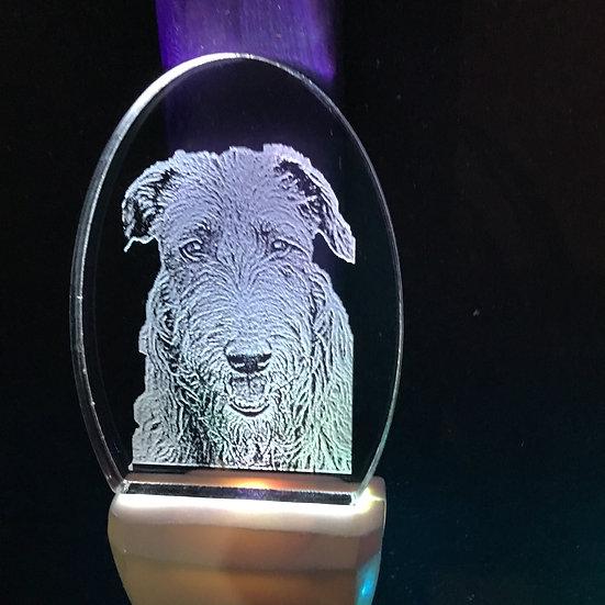 Scottish Deerhound head Night Light