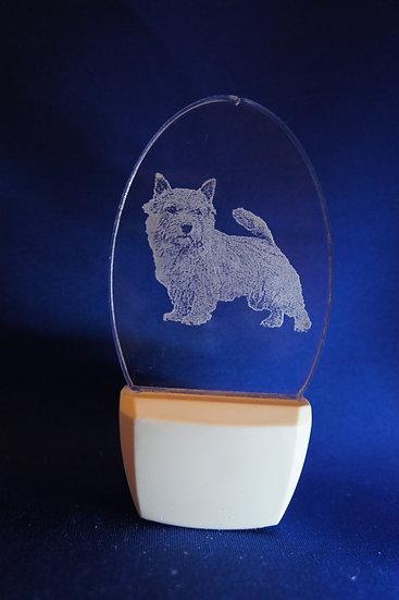 Norwich Terrier Night Light