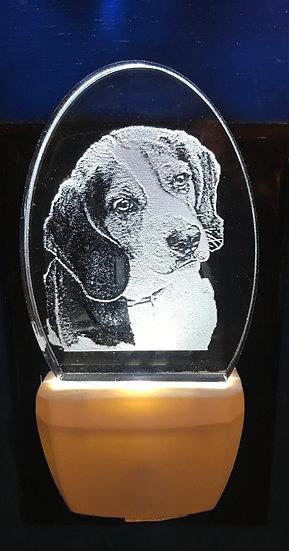 Beagle Night Light