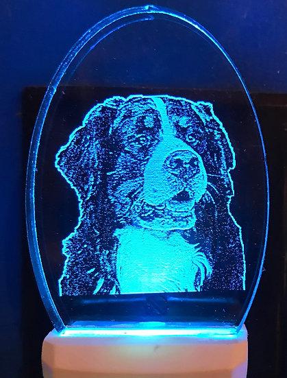Bernese Mountain Dog Night Light