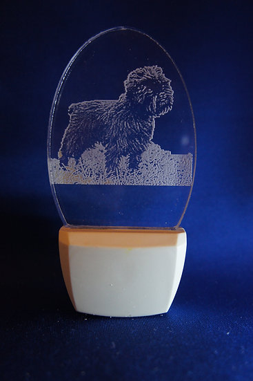 Affenpinscher night light