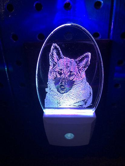 Norwegian Elkhound Night Light