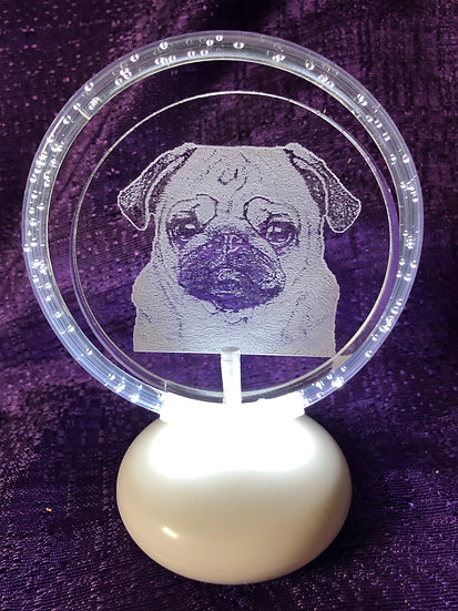HALO illuminated with 2D etched ANY BREED (Pug pictured)