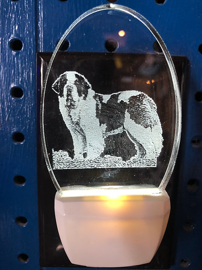 Saint Bernard Night Light