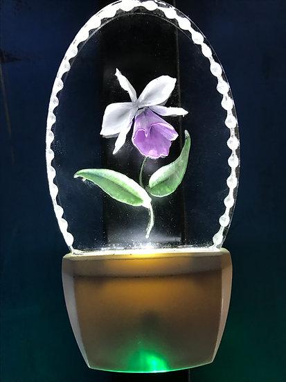 Orchid night light