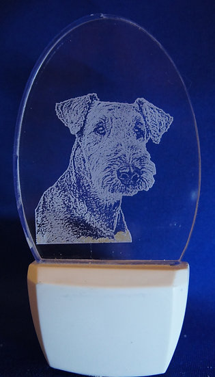Airedale head Night Light