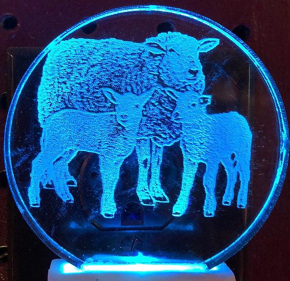 Sheep with lambs night light
