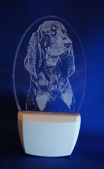 Black and Tan coonHound Night Light
