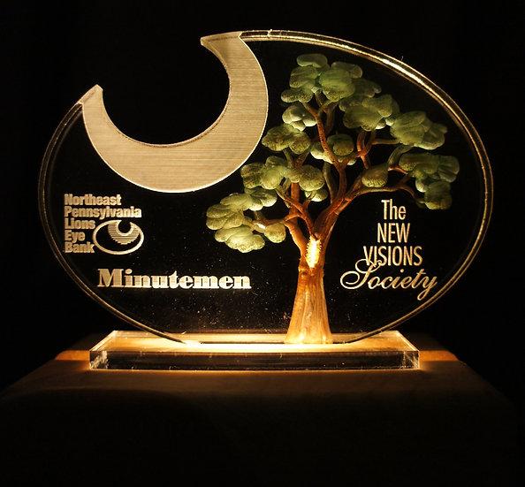 copy of Special shape trophy/ Award