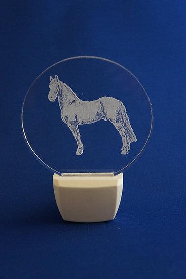 Stallion Horse Night Light