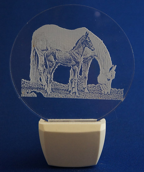 Mother Horse and coltt Night Light
