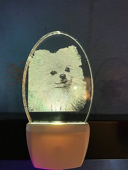 Pomerian Night Light