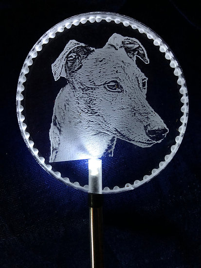 Greyhound head etched Lighted solar stake