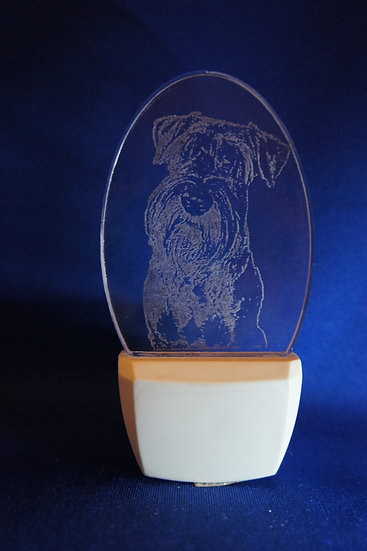 Standard Schnauzer Night Light