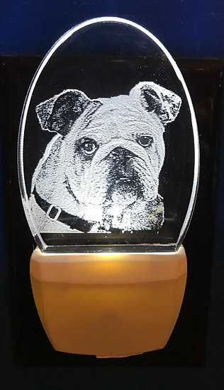 Bulldog Night Light