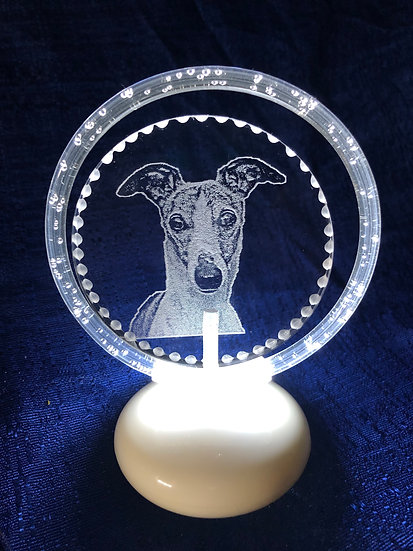 Greyhound head (front facing) halo illuminated