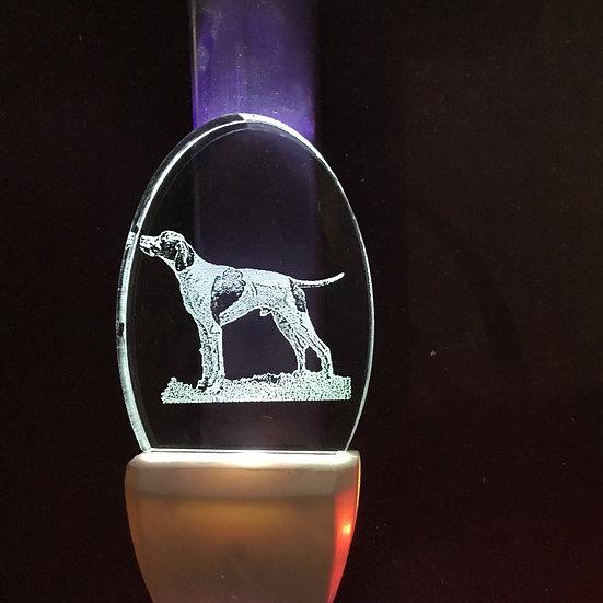 Foxhound Night Light