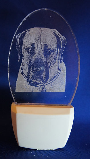 American Mastiff  head Night Light