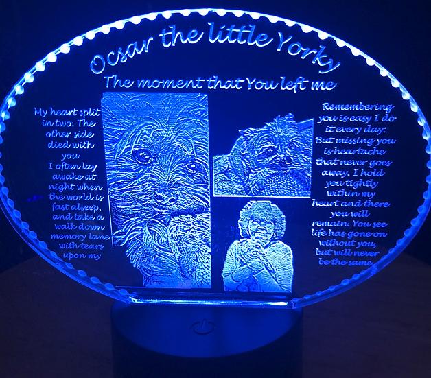 Your favorite best friend memorial on battery light