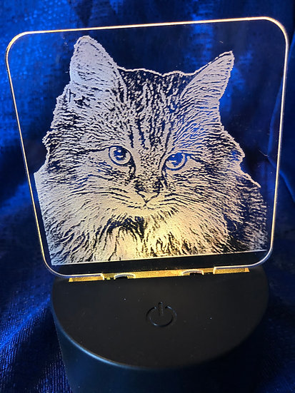 Custom Photo Cat Battery operated color changing night light