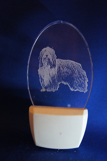 Bearded Collie Night Light