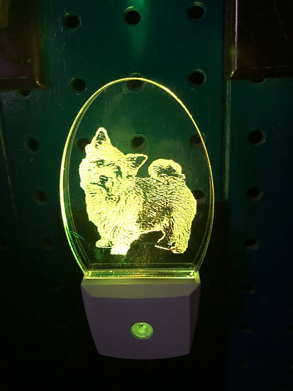Norfolk Terrier Night Light